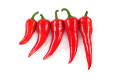 Group of chili peppers isolated Royalty Free Stock Photography