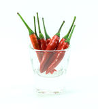 Group of chilli peppers in glass cup on white background royalty free stock photos