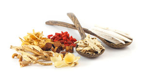 Group of chinese medicine herbs. On white background Royalty Free Stock Photo