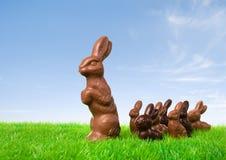 Chocolate bunny leading Royalty Free Stock Photo