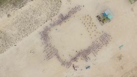 Group Choreography on The Beach.Aerial Photography stock footage