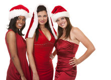 Group of christmas women Stock Image