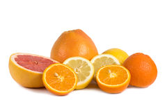 Group of citrus fruits isolated on white Stock Image