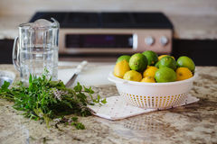 Group of citrus fruits yellow green lemons, limes, peppermint in dish on table ready for juice preparation, jar on background Stock Images