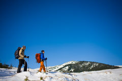 A group of climbers in the mountains. Stock Images