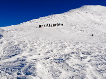 Group of climbers rises by the snow-covered mountain.  royalty free stock photos