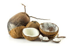 Group of coconuts on white background Stock Image