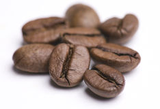 Group of Cofee Beans on White Stock Images
