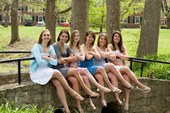 Group of College Girls. In the Park stock image