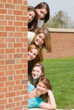 Group of College Girls. At School royalty free stock photography