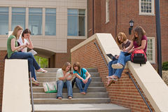 Group of College Girls. Studying Stock Image