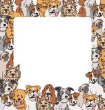 Group color dogs empty frame border Stock Photos