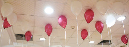 Group of colorful balloons on white ceiling. Royalty Free Stock Photography