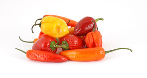 Group of colorful chili hot peppers Stock Images