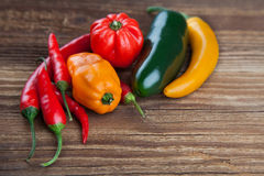 Group of colorful chili on wood Royalty Free Stock Image