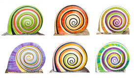 Group of colorful cocnrete gastropod Royalty Free Stock Photos