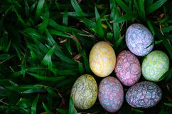 Group of colorful Easter egg painting by the crayon hiding in green grass royalty free stock image