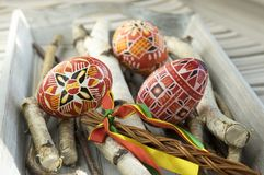 Homemade and handmade red Easter eggs on birch branches on wooden tray, traditional czech, Easter egg hunt, whip with ribbons Stock Images