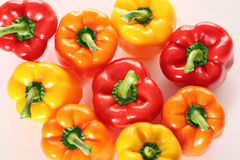 Group of colorful peppers overhead. Shot of a group of colorful peppers overhead Stock Photography