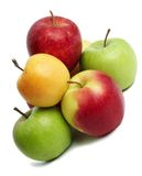 Group of coloured fresh apples Royalty Free Stock Photo