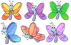 A group of colourful butterflies Royalty Free Stock Photo
