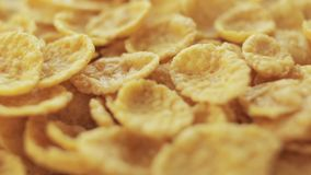 Group of cornflakes in rotation. Cornflakes close-up rotating background. Macro shot stock video