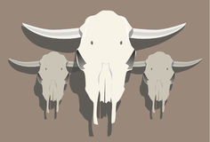 Group of Cow Skulls Illustration 1 Stock Image