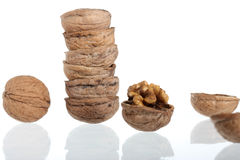 Group of cracked walnuts isolated on white Stock Images