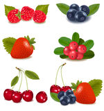 Group of cranberries, blueberries, cherries Stock Photography