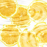Group of cross a citrus fruits under water Royalty Free Stock Image