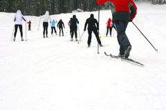 A group cross country skiing Royalty Free Stock Image