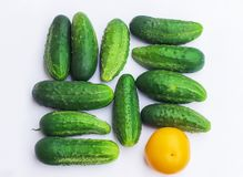 Group of cucumbers and a tomato with different colors, different Stock Photography