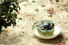 Group of cupcakes and biscuits Stock Images