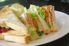 Group of Cut Toasted Sandwiches Stock Photography
