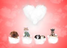 Group of cute animals on love clouds. Celebrating valentine`s day royalty free stock photo