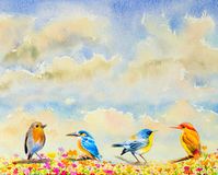 Group cute baby birds on the branches watercolor painting Stock Image