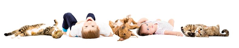 Group of cute children and playful pets. Lying isolated on white background stock photography