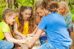 Group of cute kids playing with logs in the forest Royalty Free Stock Photo