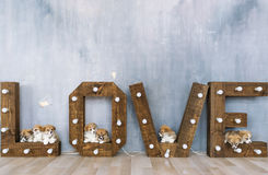 Group of cute puppies against the background of the word love