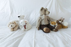 Group of cute stuffed animals on a white couch Royalty Free Stock Photos