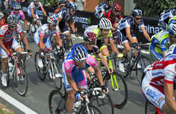 The group cycling. Detail of the group while cycling during the italian challenge 2010,ride in Conegliano the 26 of June Royalty Free Stock Photography