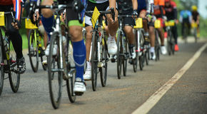 Group of cyclist at professional race Royalty Free Stock Image