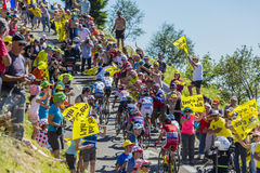 Group of Cyclists on Col du Grand Colombier - Tour de France 201 Royalty Free Stock Image
