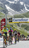 Group of Cyclists on Col du Lautaret. Col du Lautaret, France - July 19, 2014: Group of cyclists ( Nicolas Roche-Tinkoff-Saxo, José Serpa- Lampre-Merida Royalty Free Stock Photos