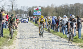 Group of Cyclists- Paris Roubaix 2015 Royalty Free Stock Images