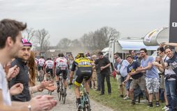 Group of Cyclists - Paris-Roubaix 2018. Templeuve, France - April 08, 2018: Rear view of a group of cyclists riding in the peloton on the cobblestone road in Stock Image