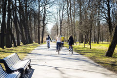 Group of cyclists in park. In the spring in a sunny day stock image