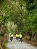 Group of cyclists on road stock image