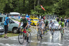 Group of Cyclists - Tour de France 2014 Stock Image