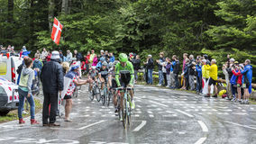 Group of Cyclists - Tour de France 2014 Stock Photos